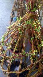 tressage osier vivant avec céramique en floraison