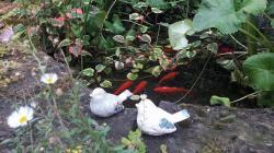 les oiseaux en grès émaillé, déco de jardin
