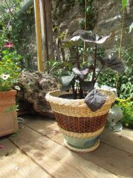 cache-pot d'intérieur fond en grès et tressage en osier
