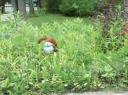 Antoinette, la poule tuteur de jardin avec son ami écureuil dans leur jardin