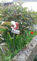 Escargot tuteur pour déco extérieure