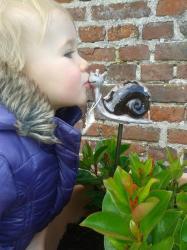 escargot-havy-zaza.jpg