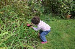 Lola la coccinelle en grès dans son jardin