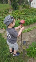 Lola la coccinelle en grès émaillé dans le jardin