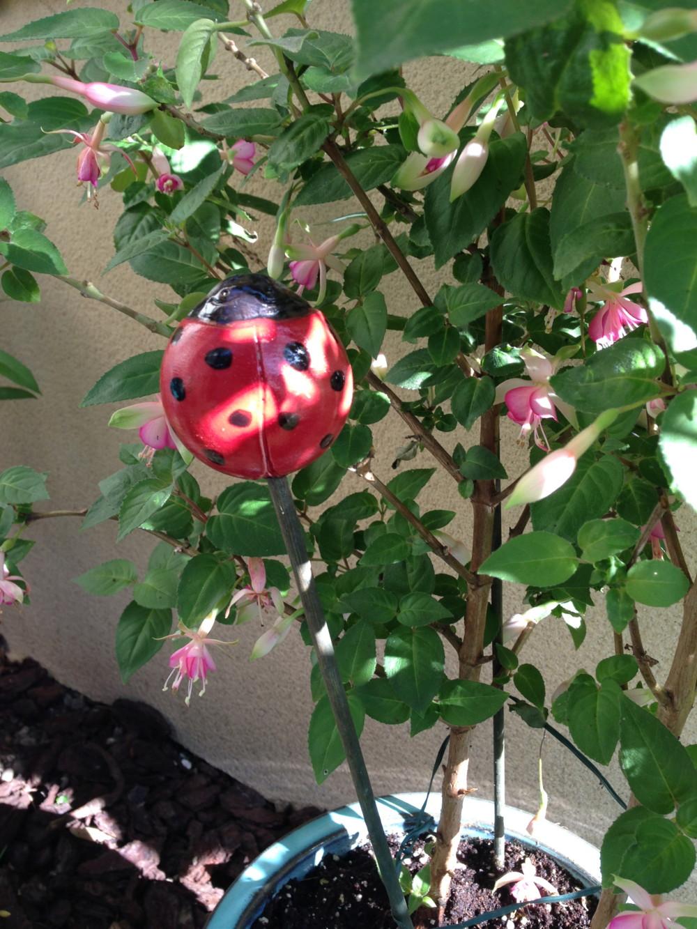 Les petites b tes tortue et coccinelle en gr s pour Coccinelle decoration exterieure