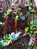 tontines osier avec oiseaux en grès