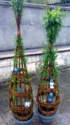 tressage d'osier vivant en pots + céramique